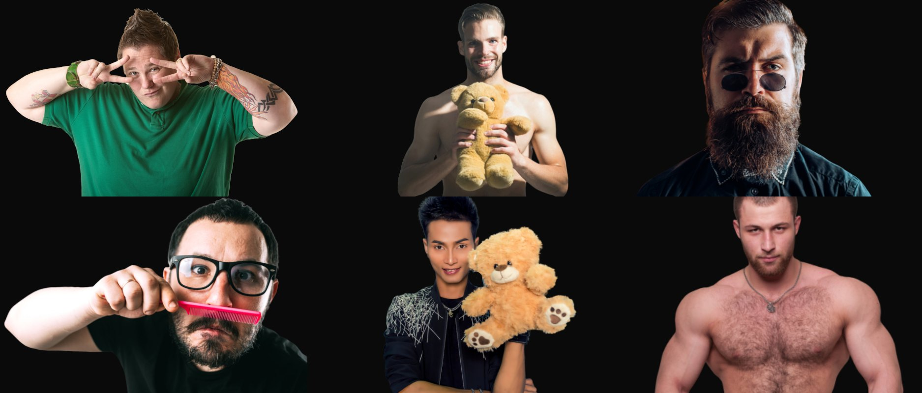 clases de osos gays