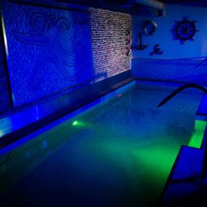 piscina de sauna octopus